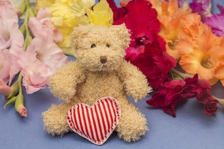 What the Color of Your Teddy Bear Means
