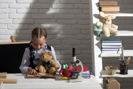 Girl Learning with Stuffed Animals