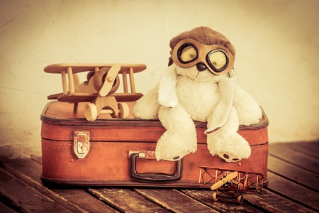 Bear in Flight Goggles