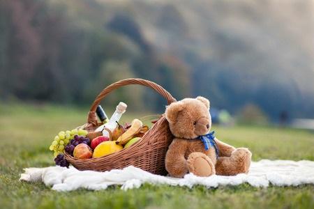 Teddy Bear on a Picnic