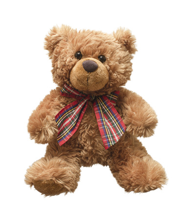 Teddy Bear with Ribbon