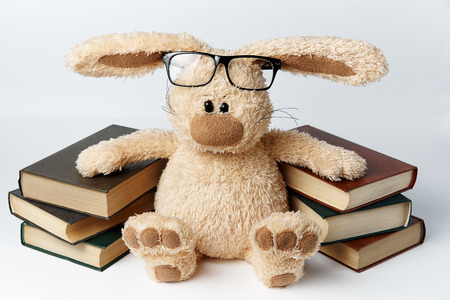 Stuffed Rabbit with Books
