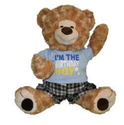 Birthday Boy Shirt and Shorts for Stuffed Animal