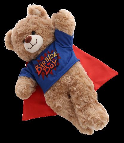 birthday boy t-shirt for stuffed animals