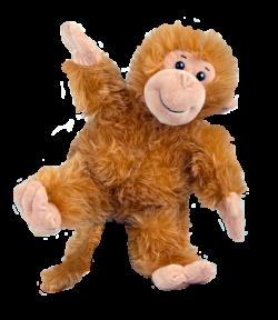 Baby Cheeky Monkey