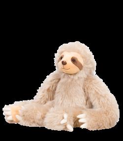 Baby Sloth