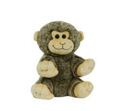 Baby Smiling Monkey