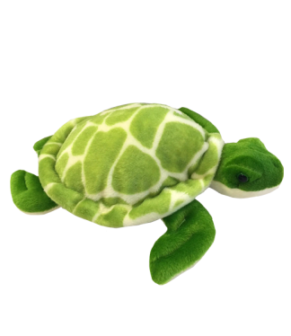 Baby Shelldon Sea Turtle